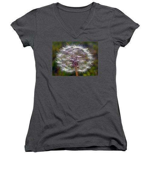 Women's V-Neck T-Shirt (Junior Cut) featuring the photograph Poof by Joseph Skompski