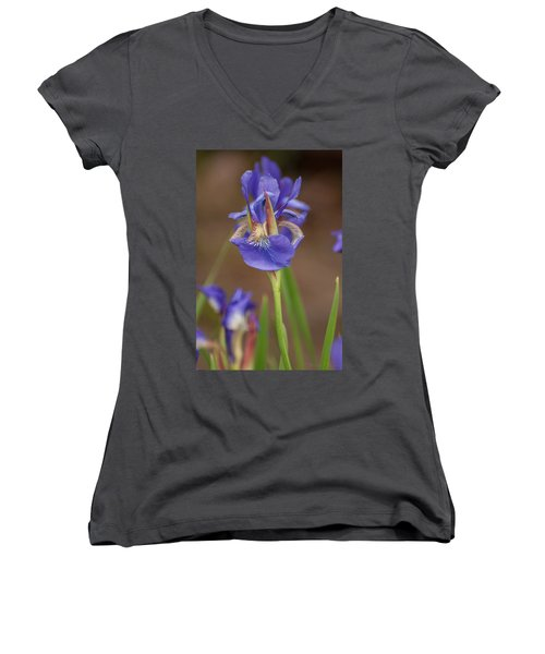 Purple Bearded Iris Women's V-Neck T-Shirt