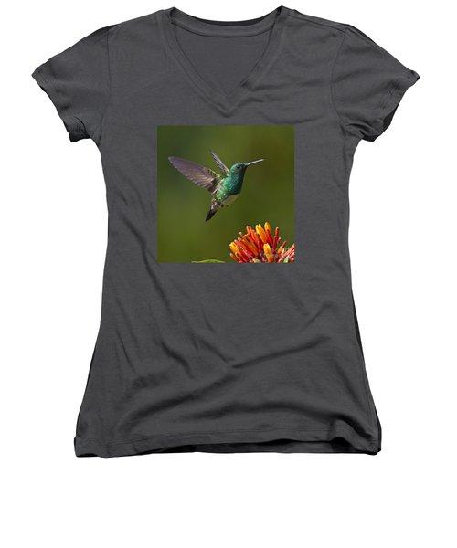 Snowy-bellied Hummingbird Women's V-Neck T-Shirt