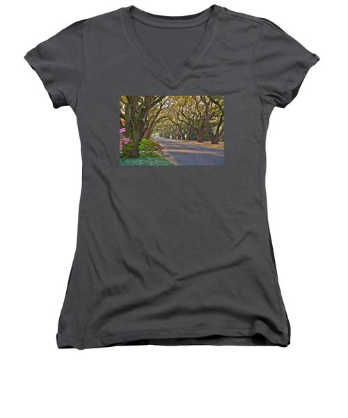 South Boundary In Spring Women's V-Neck T-Shirt