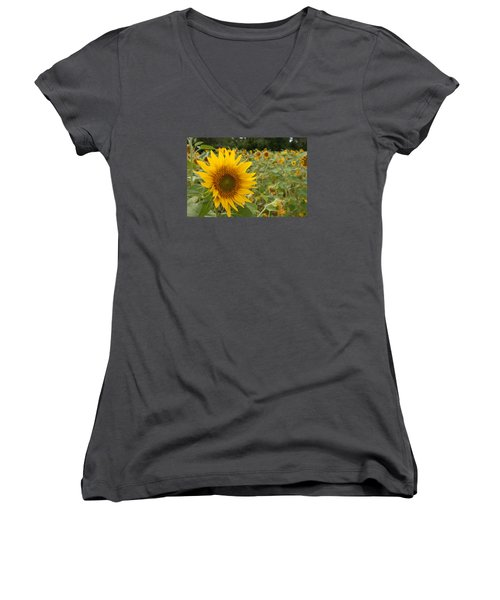 Sun Flower Fields Women's V-Neck T-Shirt (Junior Cut) by Miguel Winterpacht