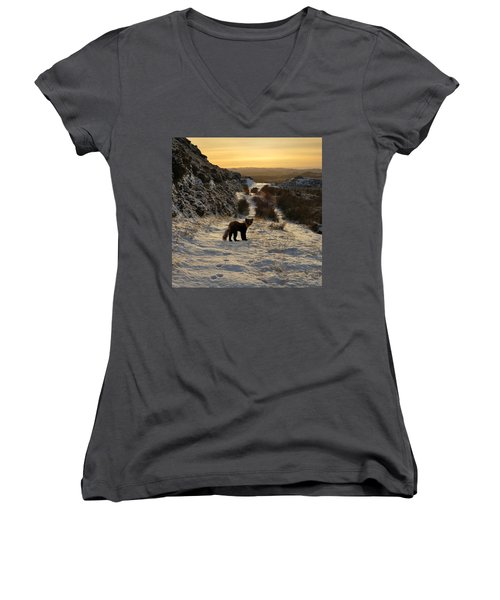 The Pine Marten's Path Women's V-Neck