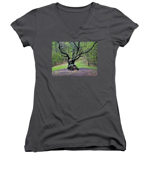 Tree In The Forest Women's V-Neck T-Shirt
