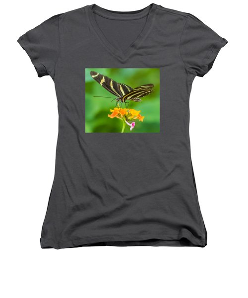 Women's V-Neck T-Shirt (Junior Cut) featuring the photograph Zebra Longwing by Jane Luxton