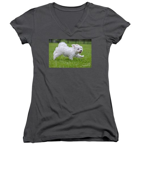 110801p130 Women's V-Neck T-Shirt (Junior Cut) by Arterra Picture Library