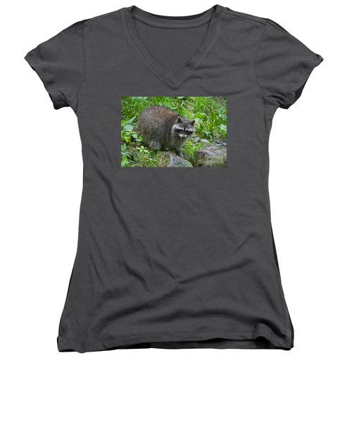 Women's V-Neck T-Shirt (Junior Cut) featuring the photograph 130201p045 by Arterra Picture Library