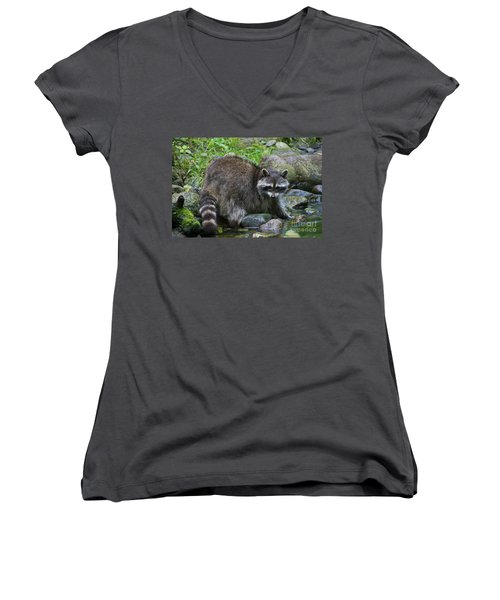 Women's V-Neck T-Shirt (Junior Cut) featuring the photograph 130201p047 by Arterra Picture Library