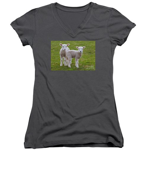 Women's V-Neck T-Shirt (Junior Cut) featuring the photograph 130201p091 by Arterra Picture Library