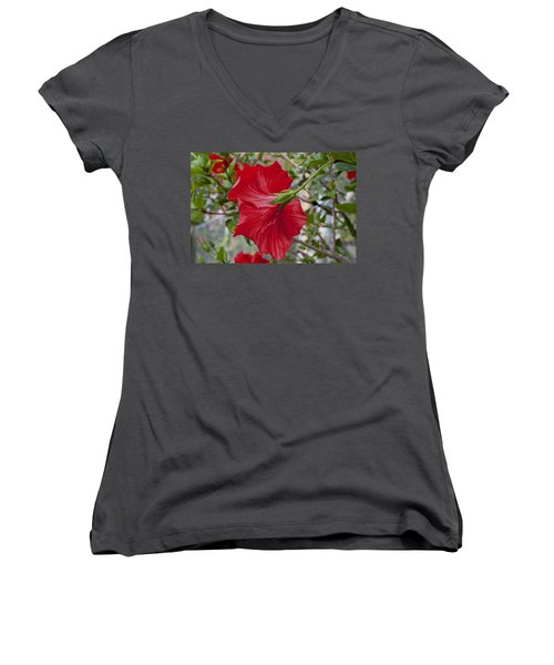 Abstract Hibiscus Women's V-Neck (Athletic Fit)