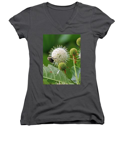 Bumbler Women's V-Neck T-Shirt