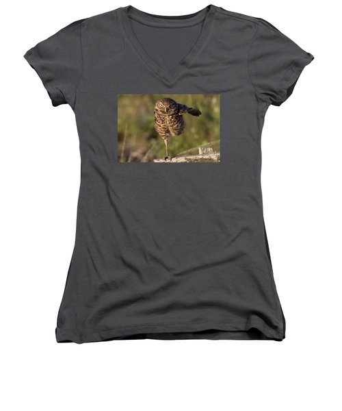 Burrowing Owl Photograph Women's V-Neck T-Shirt (Junior Cut) by Meg Rousher