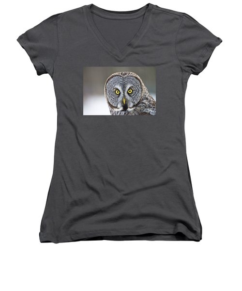 Great Gray Owl Portrait Women's V-Neck