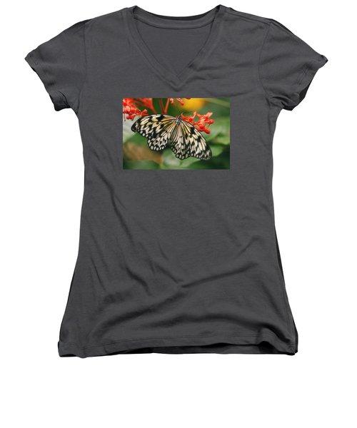Paper Kite Butterfly Women's V-Neck T-Shirt