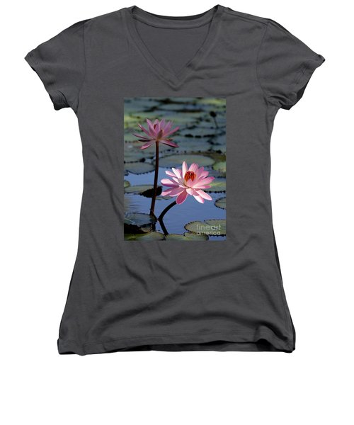 Pink Water Lily In The Spotlight Women's V-Neck