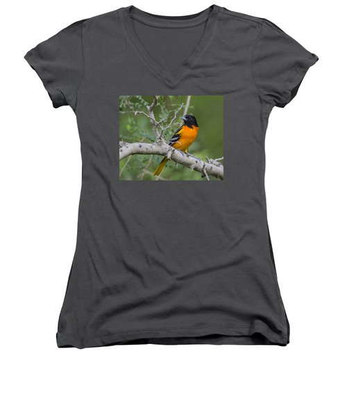 Pretty Boy  Women's V-Neck T-Shirt