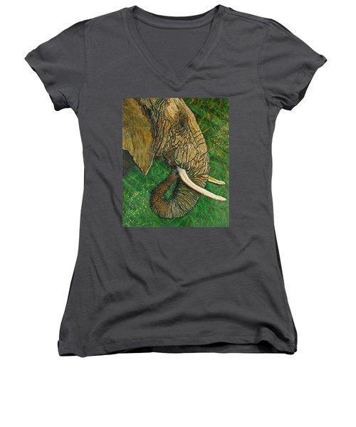 Respect Women's V-Neck T-Shirt