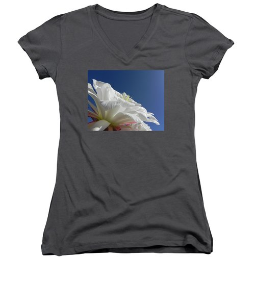 Women's V-Neck T-Shirt (Junior Cut) featuring the photograph Striking Contrast by Deb Halloran