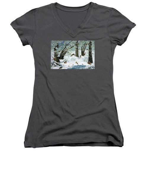 They Said It Wouldn't Snow Women's V-Neck