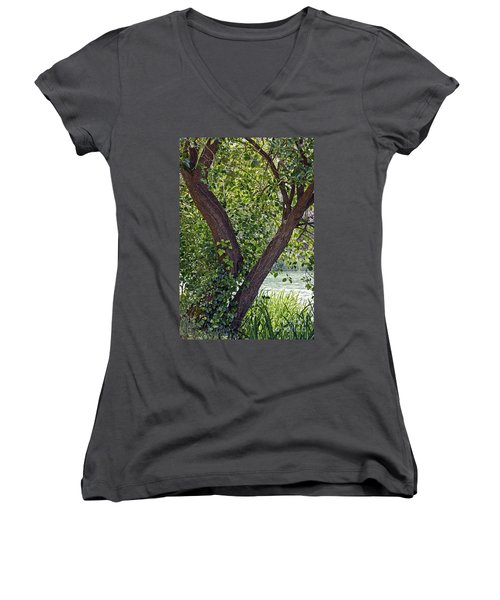 Women's V-Neck T-Shirt (Junior Cut) featuring the photograph Tree At Stow Lake by Kate Brown