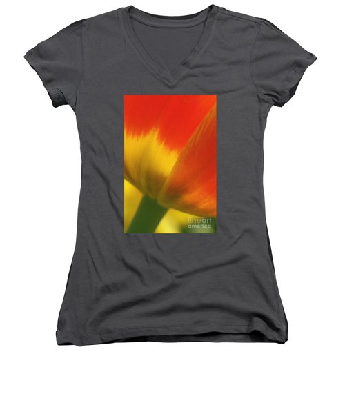 Tulip Close Up 2 Women's V-Neck T-Shirt (Junior Cut) by Rudi Prott
