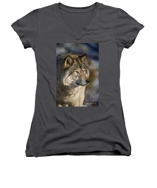 Timber Wolf Pictures Women's V-Neck T-Shirt