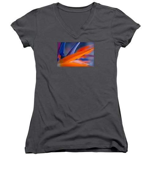 Women's V-Neck T-Shirt featuring the photograph Art By Nature by Sharon Mau