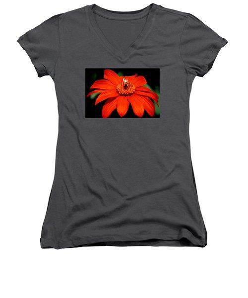 Busy Bee  Women's V-Neck T-Shirt