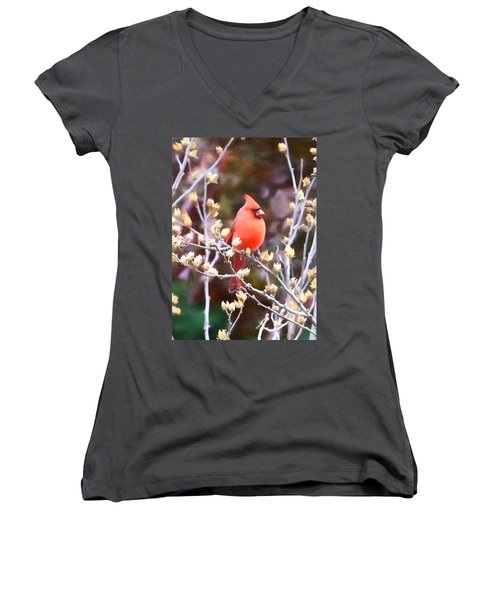 Cardinal Women's V-Neck T-Shirt (Junior Cut) by John Freidenberg