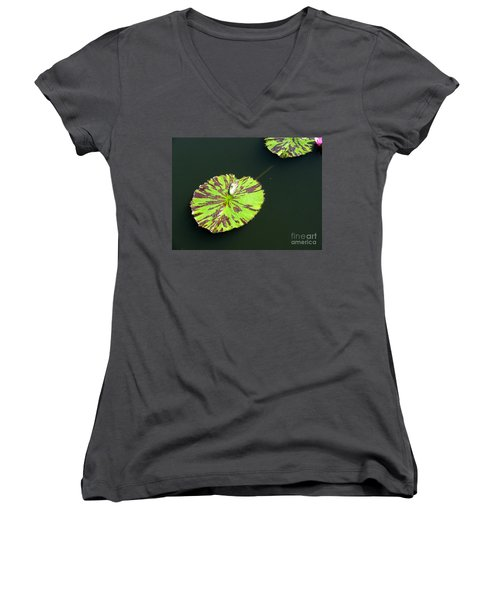 3 Women's V-Neck (Athletic Fit)