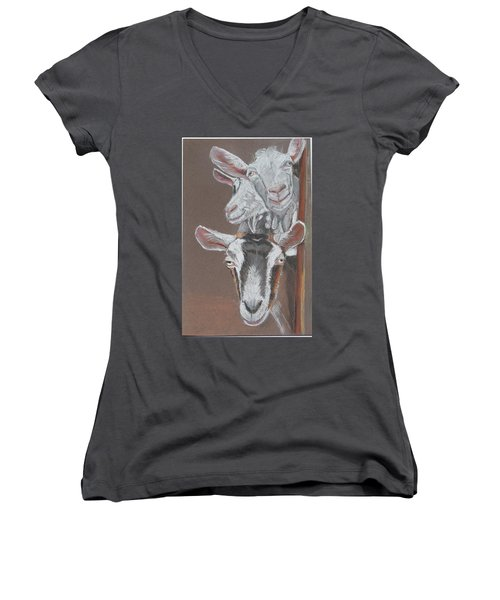 3 Nosey Goats Women's V-Neck (Athletic Fit)
