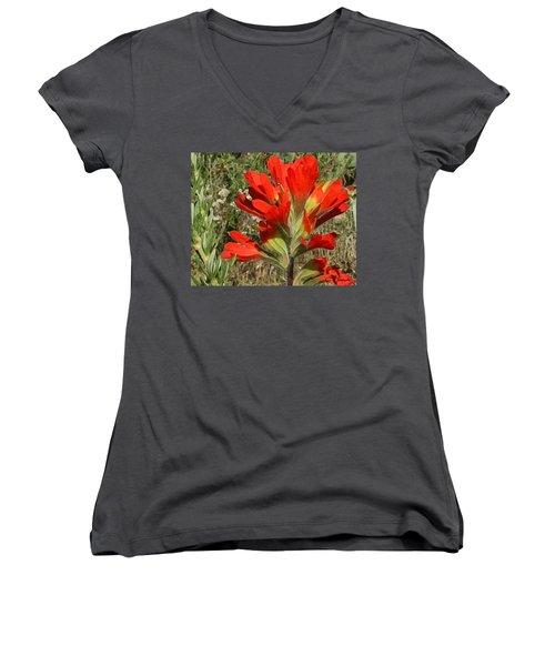 Texas Paintbrush Women's V-Neck T-Shirt (Junior Cut) by Ellen Henneke
