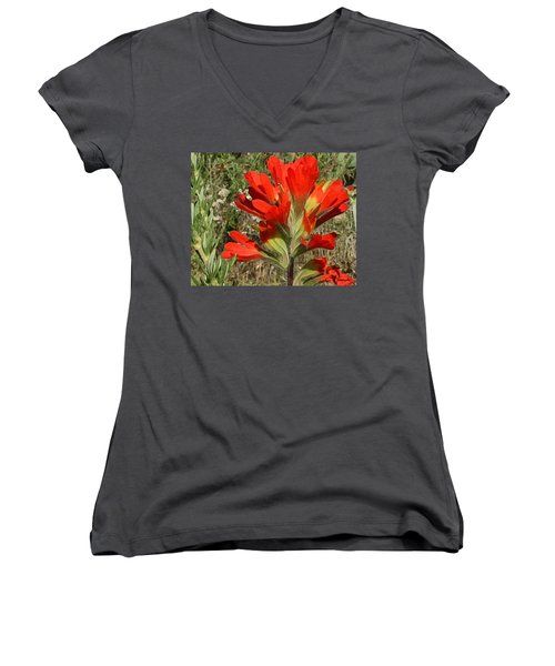 Texas Paintbrush Women's V-Neck T-Shirt (Junior Cut)