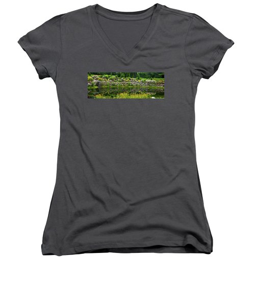 Rocks And Plants In Rock Garden Women's V-Neck T-Shirt