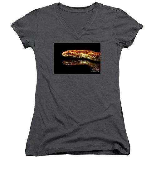 Women's V-Neck T-Shirt (Junior Cut) featuring the photograph Snake by Gunnar Orn Arnason