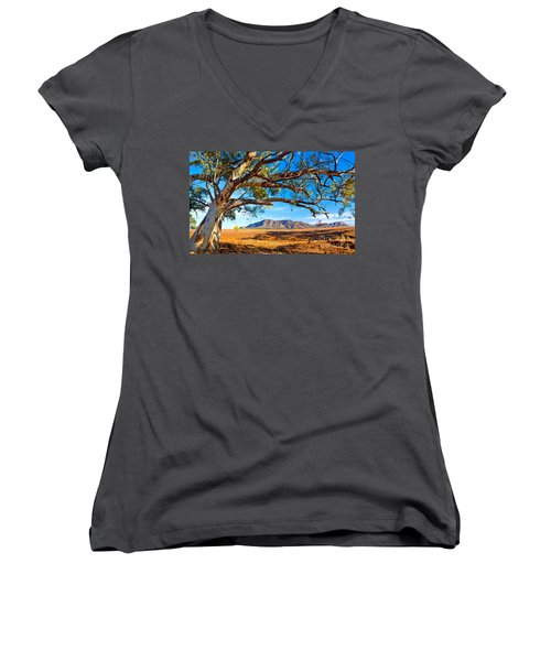 Women's V-Neck T-Shirt (Junior Cut) featuring the photograph Wilpena Pound by Bill  Robinson