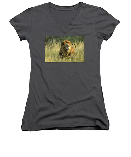 King Of The Savanna Women's V-Neck (Athletic Fit)