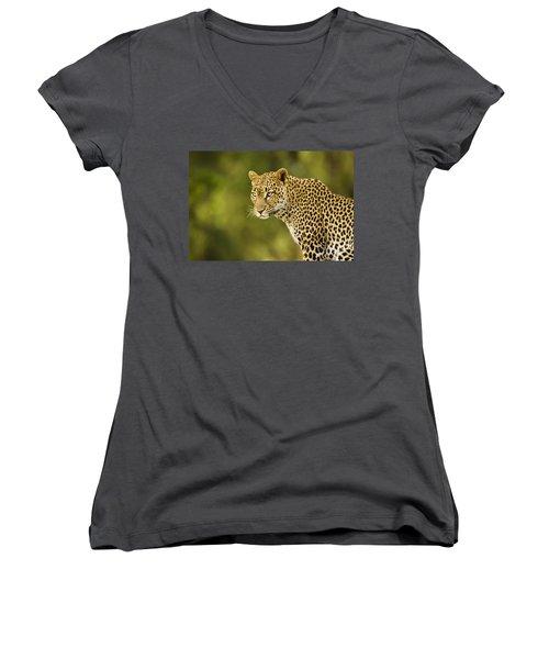 Lovely Leopard Women's V-Neck (Athletic Fit)