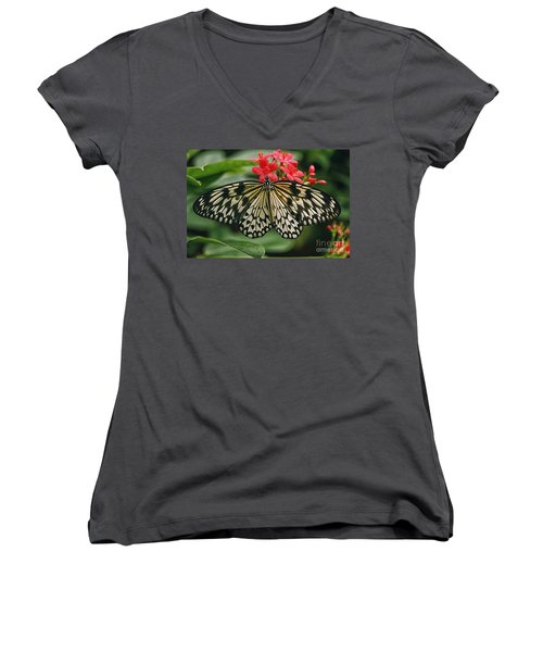 Paper Kite Butterfly Women's V-Neck (Athletic Fit)