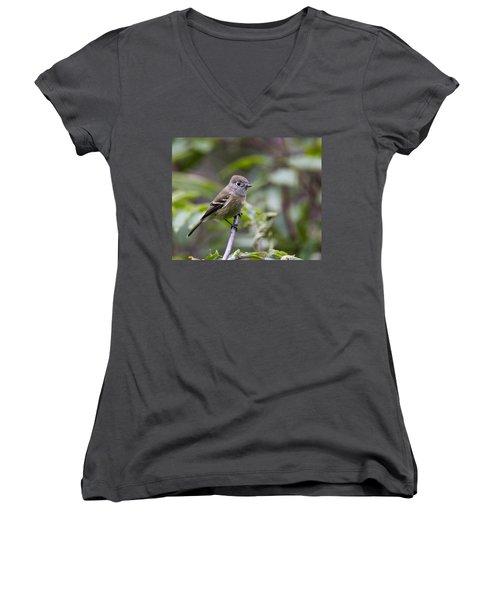 Alder Flycatcher Women's V-Neck T-Shirt