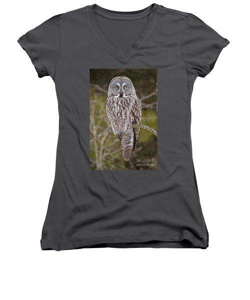 Great Gray Owl Women's V-Neck