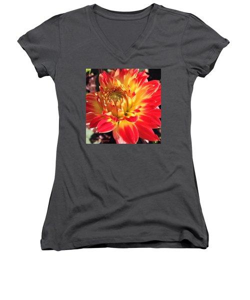 A Burst Of Fall Color Women's V-Neck T-Shirt