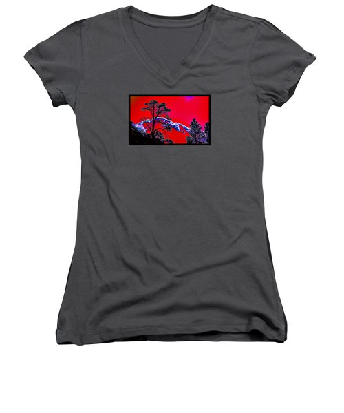A Certain Cosmic Ecology Women's V-Neck T-Shirt (Junior Cut) by Susanne Still