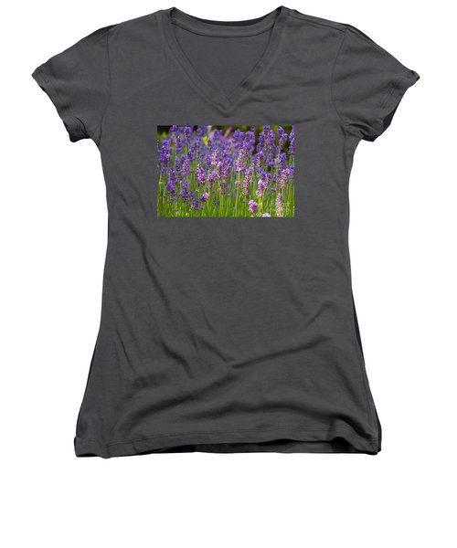 Women's V-Neck T-Shirt (Junior Cut) featuring the photograph A Friendly Summer Day by Juergen Klust
