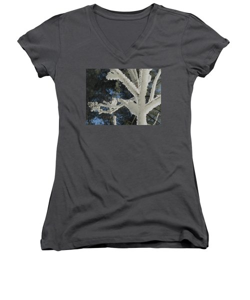 A Frosty Morning Women's V-Neck T-Shirt