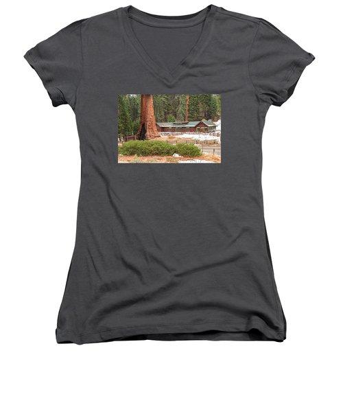 A Giant Among Trees Women's V-Neck T-Shirt
