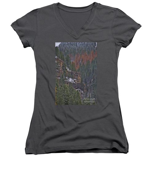 A Hint Of Brown Women's V-Neck T-Shirt