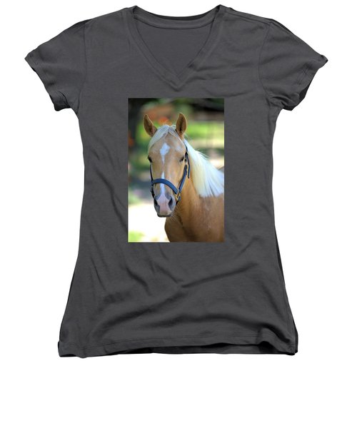Women's V-Neck T-Shirt (Junior Cut) featuring the photograph A Loyal Friend by Gordon Elwell