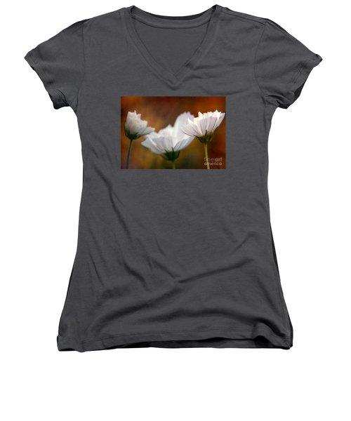 A Monet Spring Women's V-Neck T-Shirt (Junior Cut) by Michael Hoard