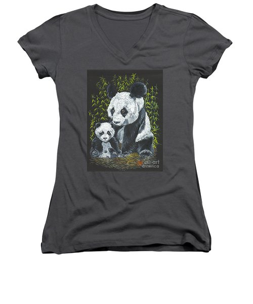 A Mothers Devotion Women's V-Neck T-Shirt