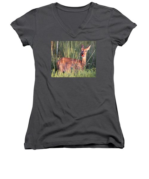 A Mouth Full Women's V-Neck T-Shirt (Junior Cut) by Elizabeth Winter